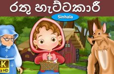 රතු හැට්ටකාරී  Little Red Riding Hood in Sinhala  Sinhala Cartoon