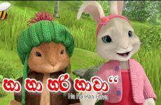Sinhala Lama Gee - Ha Ha Hari Hawa